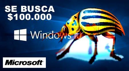 Bug Microsoft