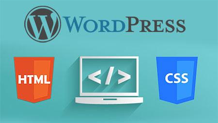 Agrega algo de HTML a la cabecera o al pie de la web